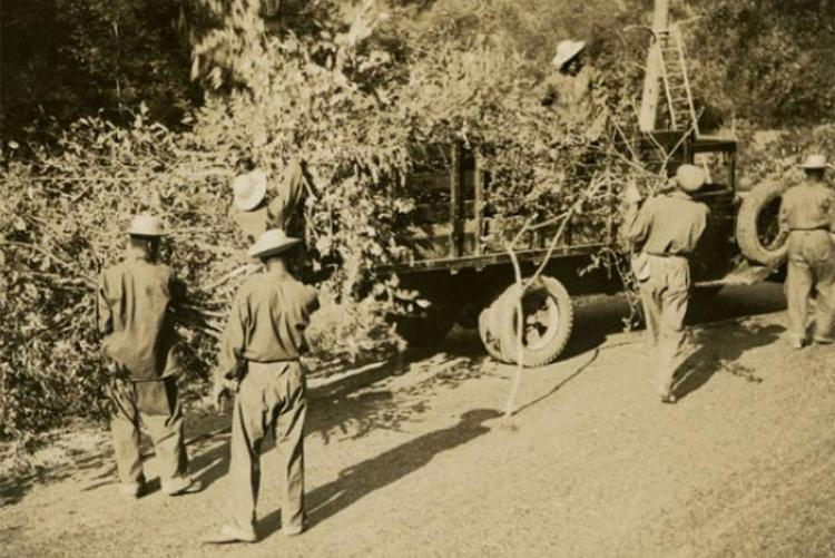 RG 93, Civilian Conservation Corps Records